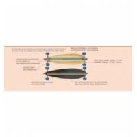 Riedlentė CRUISER BAY longboard